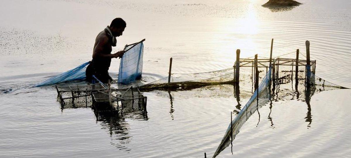 Solidaridad visser aan het werk