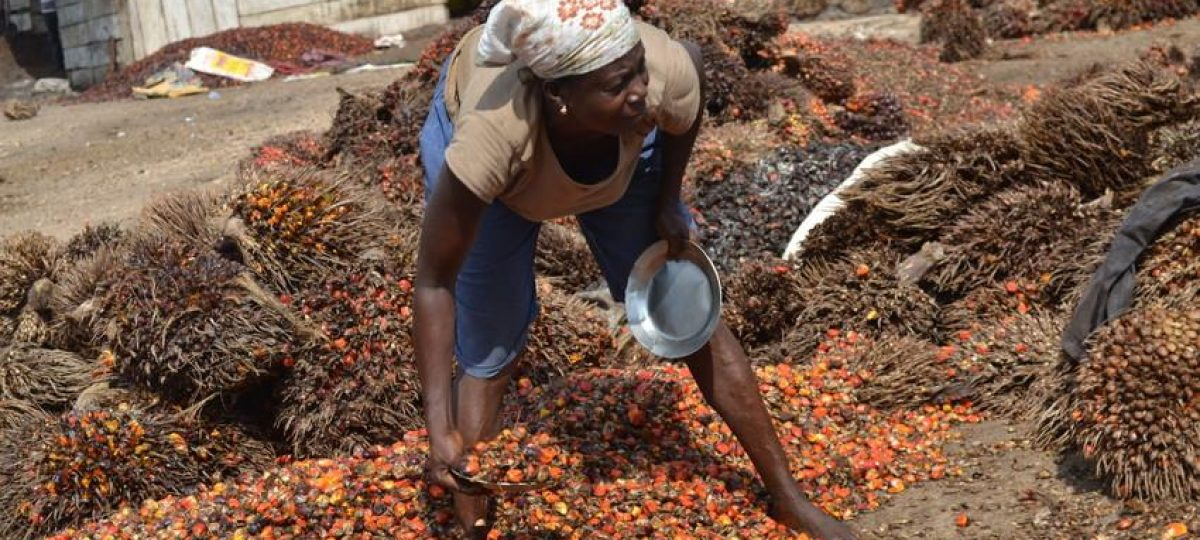 Palmoil West-Africa