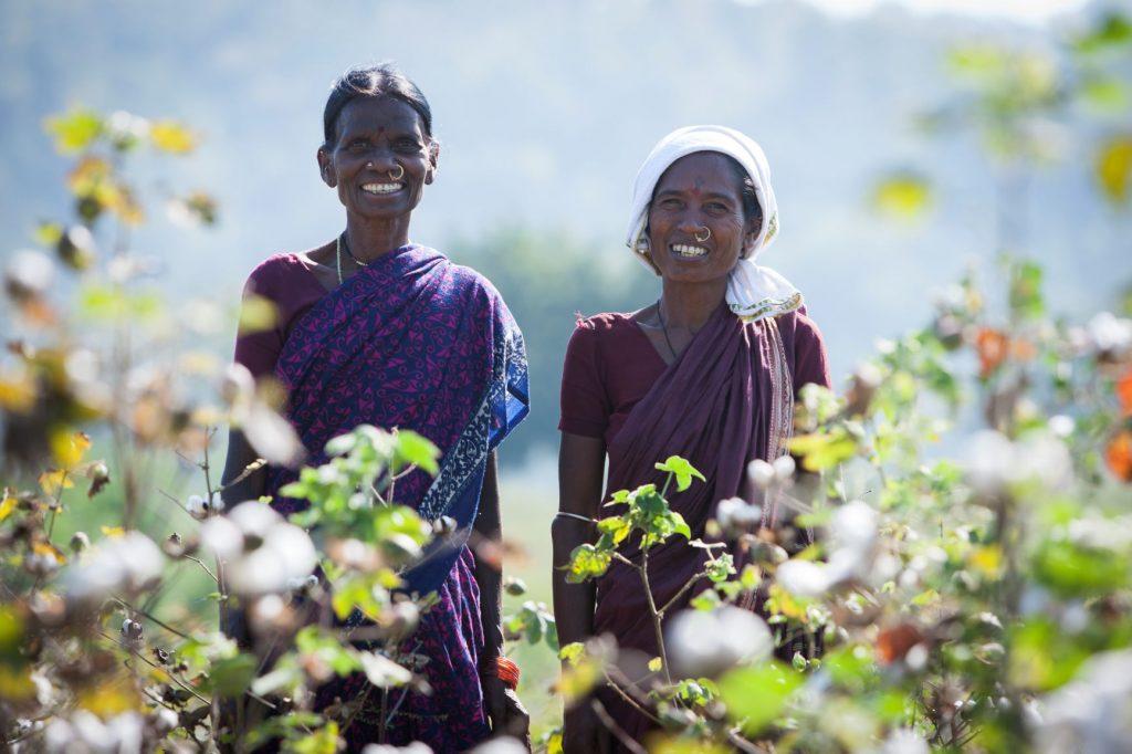 vrouwen in het katoenveld